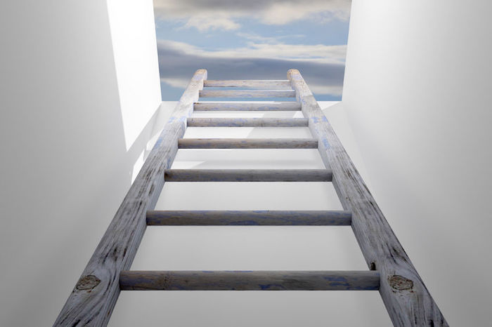 steps for personal growth - Climb the corporate ladder or build your own?